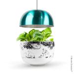 Plantui Moomin Garden 3, turquoise