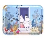 OPTO Tray 43x33 Moomin Doorstep