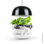 Plantui Moomin Garden 3, black